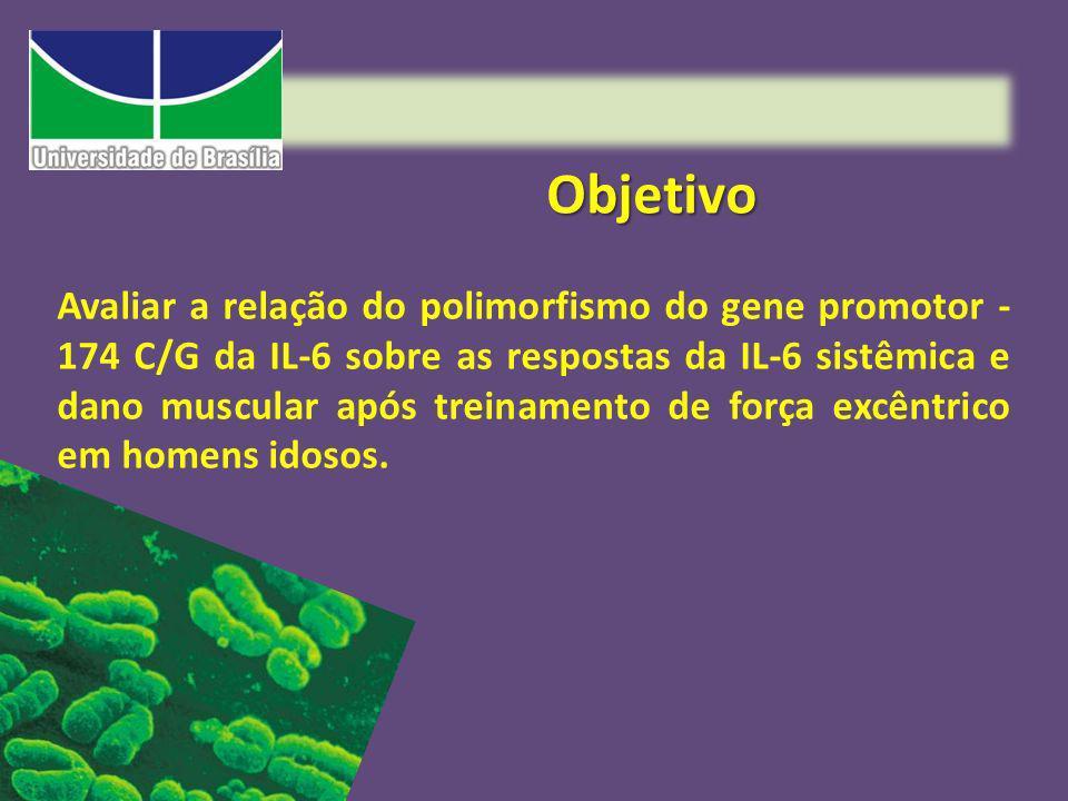 Metodologia Serão avaliados 90 idosos do sexo masculino, nos seguintes quesitos: Composição Corporal Polimorfismo do gene promotor -174 C/G da IL-6 Força Dano Níveis séricos de IL=6