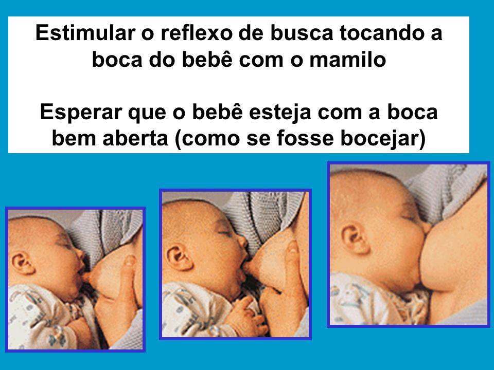 Estimular o reflexo de busca tocando a boca do bebê com o mamilo Esperar que o bebê esteja com a boca bem aberta (como se fosse bocejar)