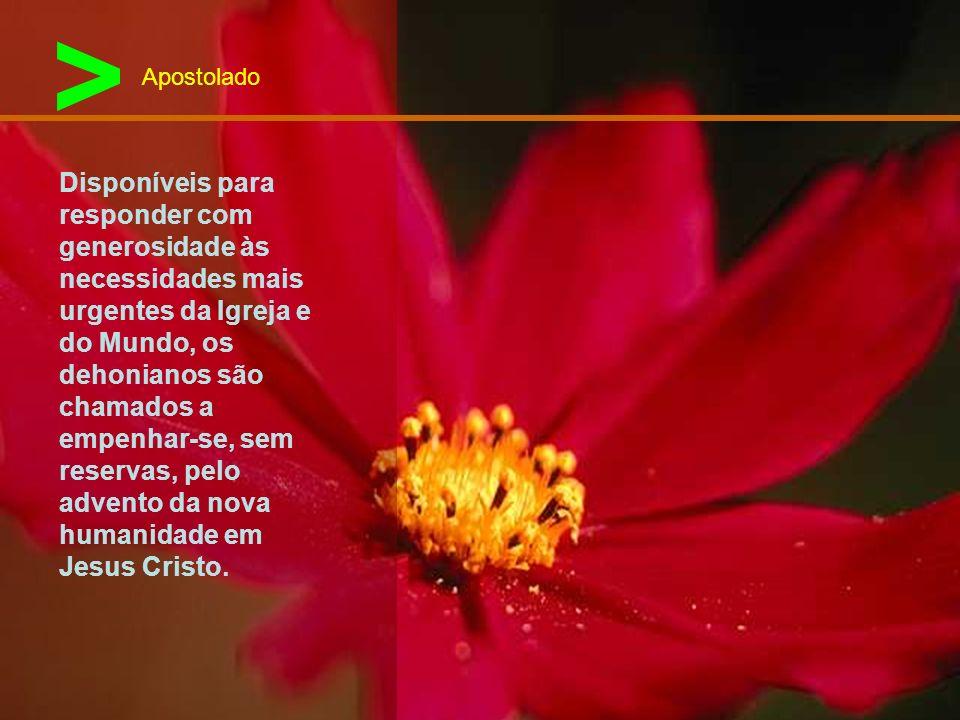 > Os discípulos de Leão Dehon, fazendo da sua vida uma missa permanente, são no mundo profetas do amor e servidores da reconciliação. Profetas de um m
