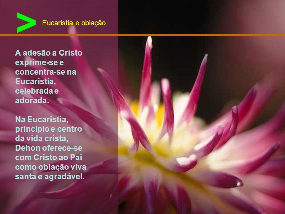 > A adesão total à pessoa de Cristo faz com que Leão Dehon esteja particularmente atento aos mais necessitados da sociedade. Opção pelos pobres