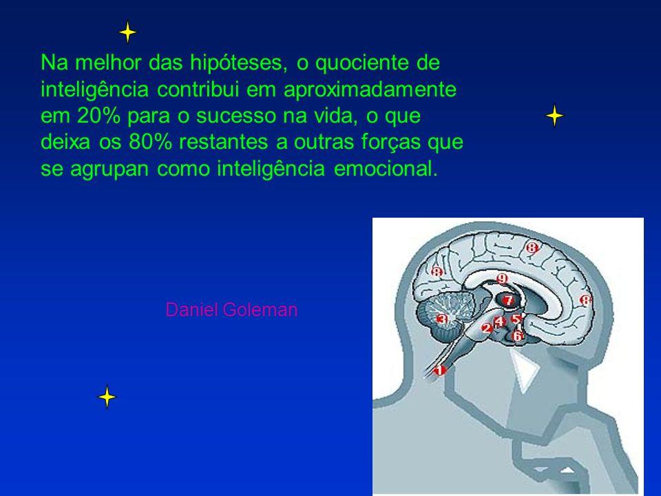 Na melhor das hipóteses, o quociente de inteligência contribui em aproximadamente em 20% para o sucesso na vida, o que deixa os 80% restantes a outras forças que se agrupan como inteligência emocional.