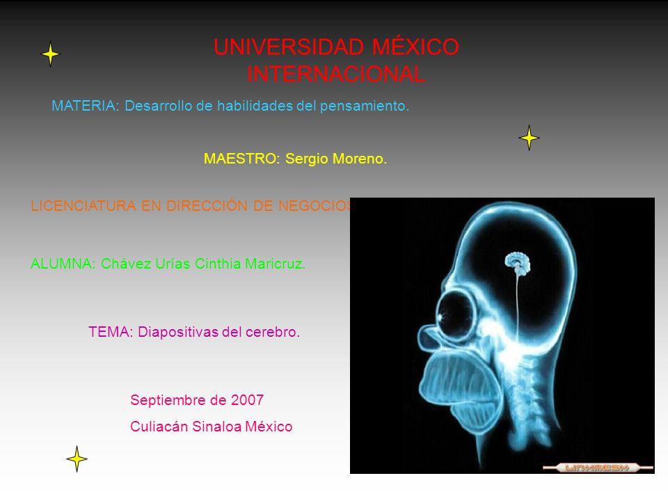 UNIVERSIDAD MÉXICO INTERNACIONAL MATERIA: Desarrollo de habilidades del pensamiento. MAESTRO: Sergio Moreno. LICENCIATURA EN DIRECCIÓN DE NEGOCIOS ALU