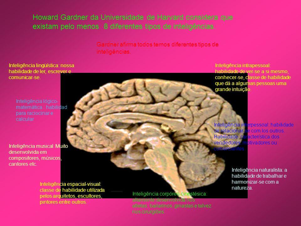 Howard Gardner da Universidade de Harvard considera que existam pelo menos 8 diferentes tipos de inteligências. Gardner afirma todos temos diferentes