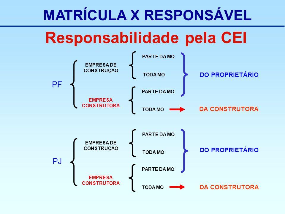 Responsabilidade pela CEI PF EMPRESA DE CONSTRUÇÃO TODA MO PARTE DA MO EMPRESA CONSTRUTORA TODA MO PARTE DA MO PJ EMPRESA DE CONSTRUÇÃO TODA MO PARTE