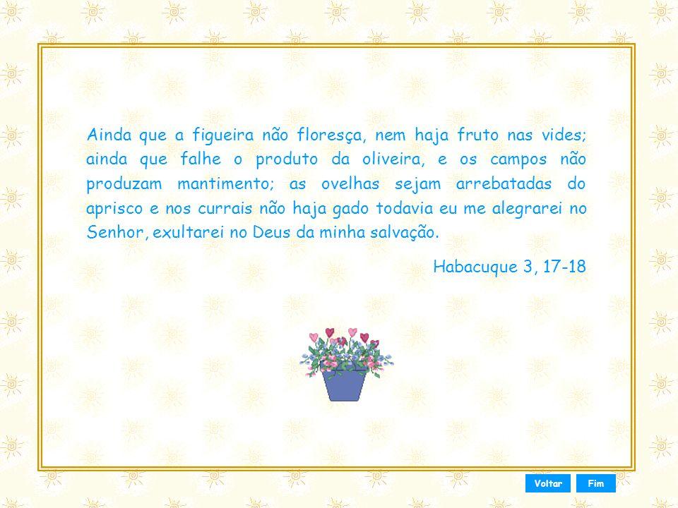 Esse slide foi feito por Luana Rodrigues Em 24.06.03 – luannarj@uol.com.br www.luannarj.hpg.ig.com.br Vc não tem direito de alterar nada nele.. Hoje é