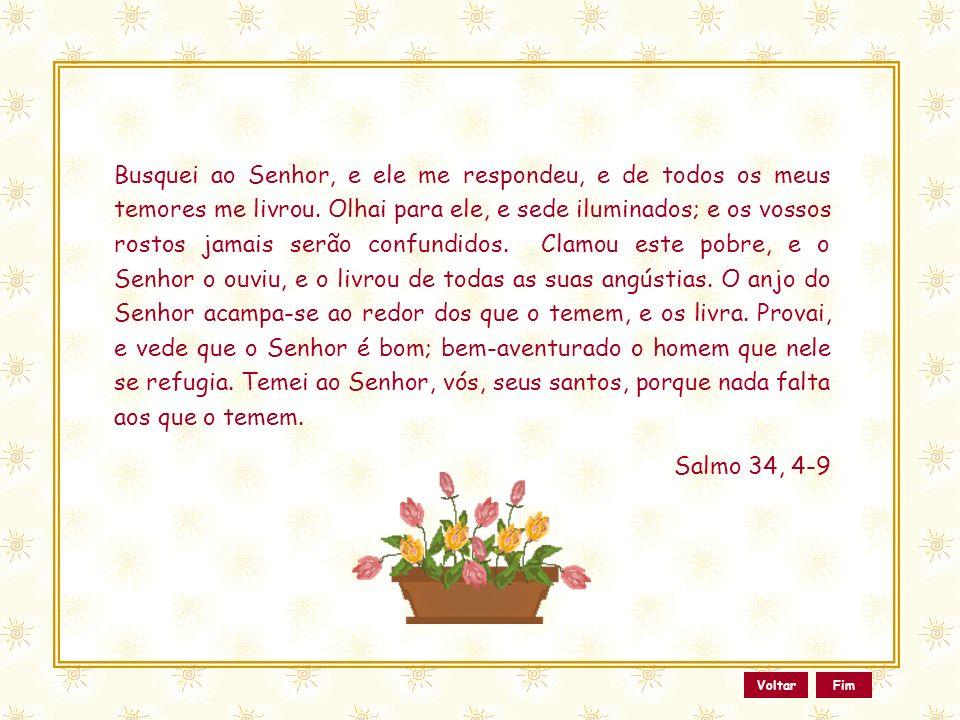 Esse slide foi feito por Luana Rodrigues Em 24.06.03 – luannarj@uol.com.br www.luannarj.hpg.ig.com.br Vc não tem direito de alterar nada nele.. Ainda