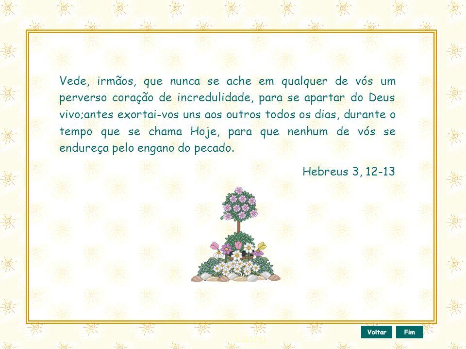 Esse slide foi feito por Luana Rodrigues Em 24.06.03 – luannarj@uol.com.br www.luannarj.hpg.ig.com.br Vc não tem direito de alterar nada nele.. Bendit