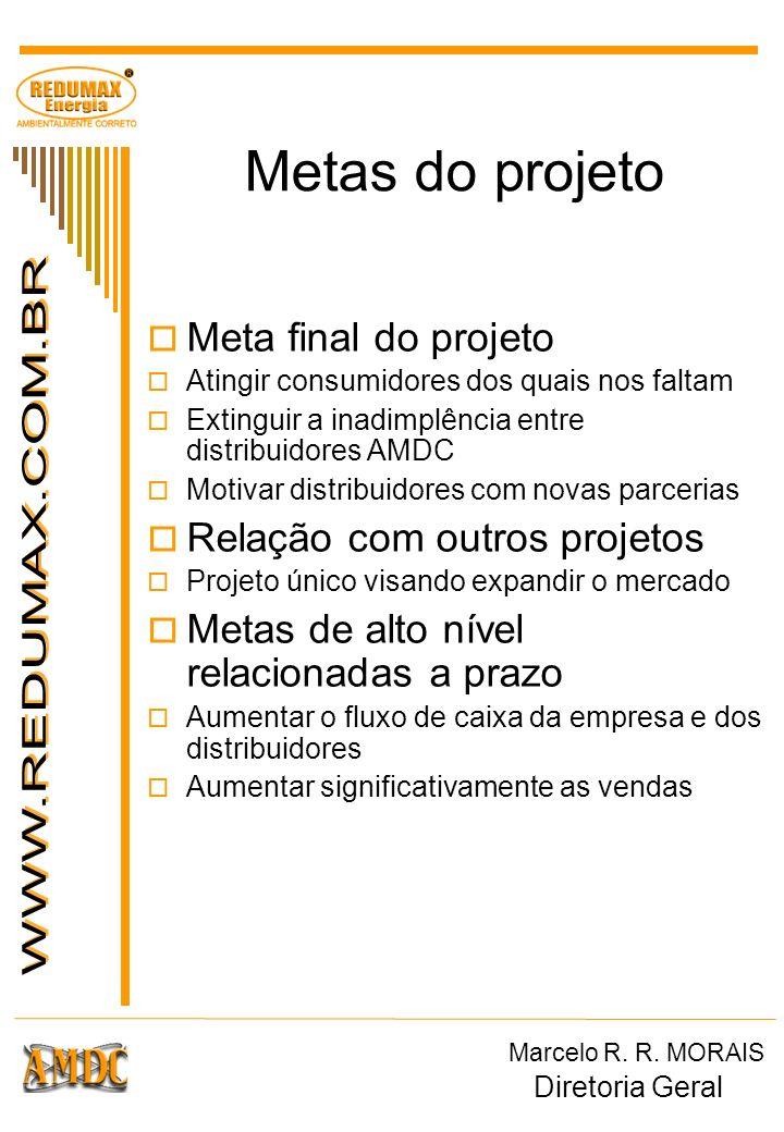 Metas do projeto Meta final do projeto Atingir consumidores dos quais nos faltam Extinguir a inadimplência entre distribuidores AMDC Motivar distribui