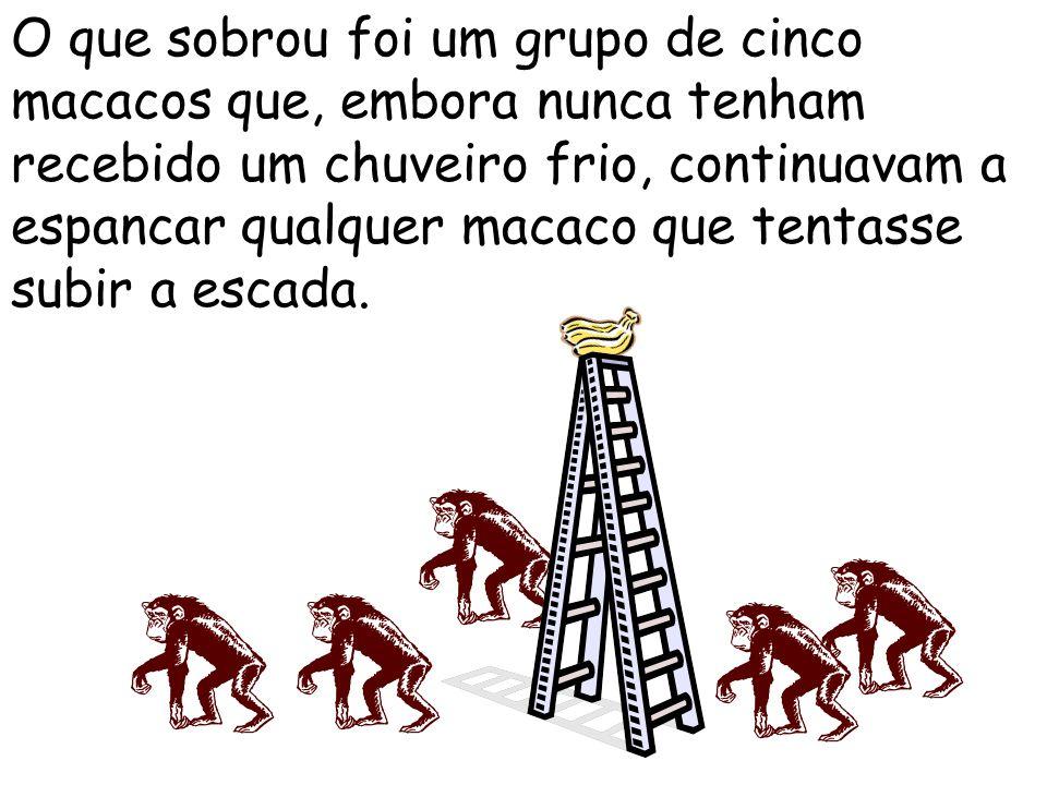 Um terceiro macaco foi trocado e o mesmo espancamento foi repetido. O quarto e o quinto macaco foram também trocados, um de cada vez, com intervalos a