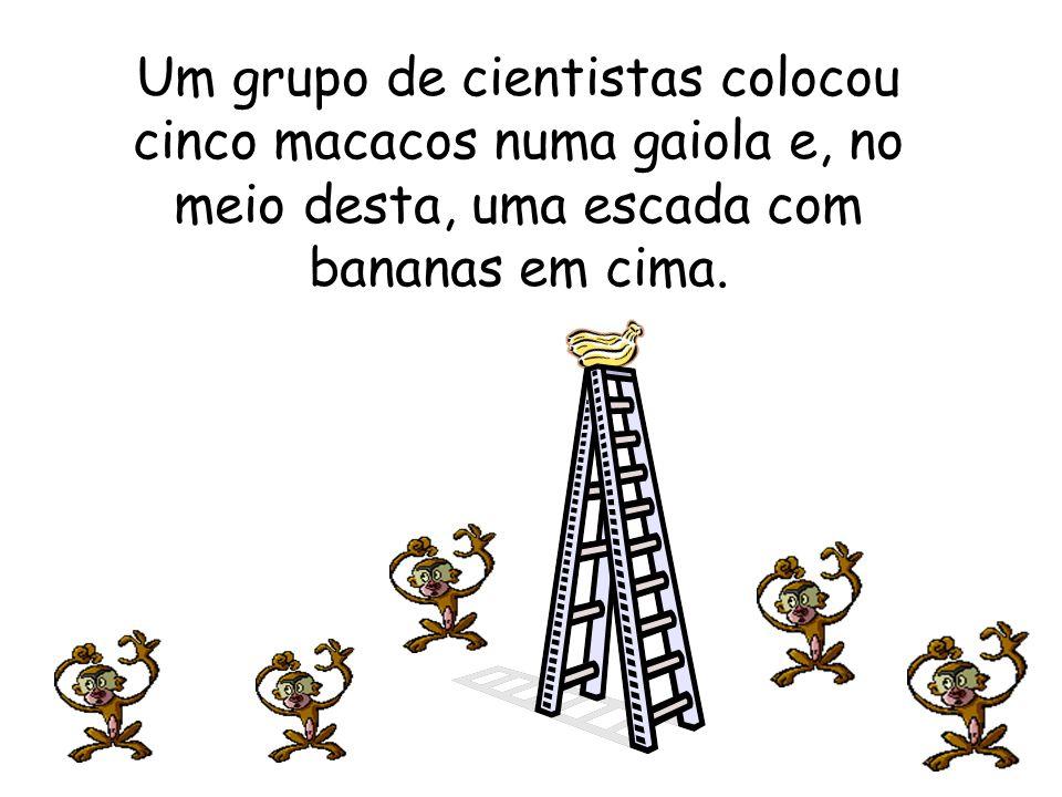 Um grupo de cientistas colocou cinco macacos numa gaiola e, no meio desta, uma escada com bananas em cima.