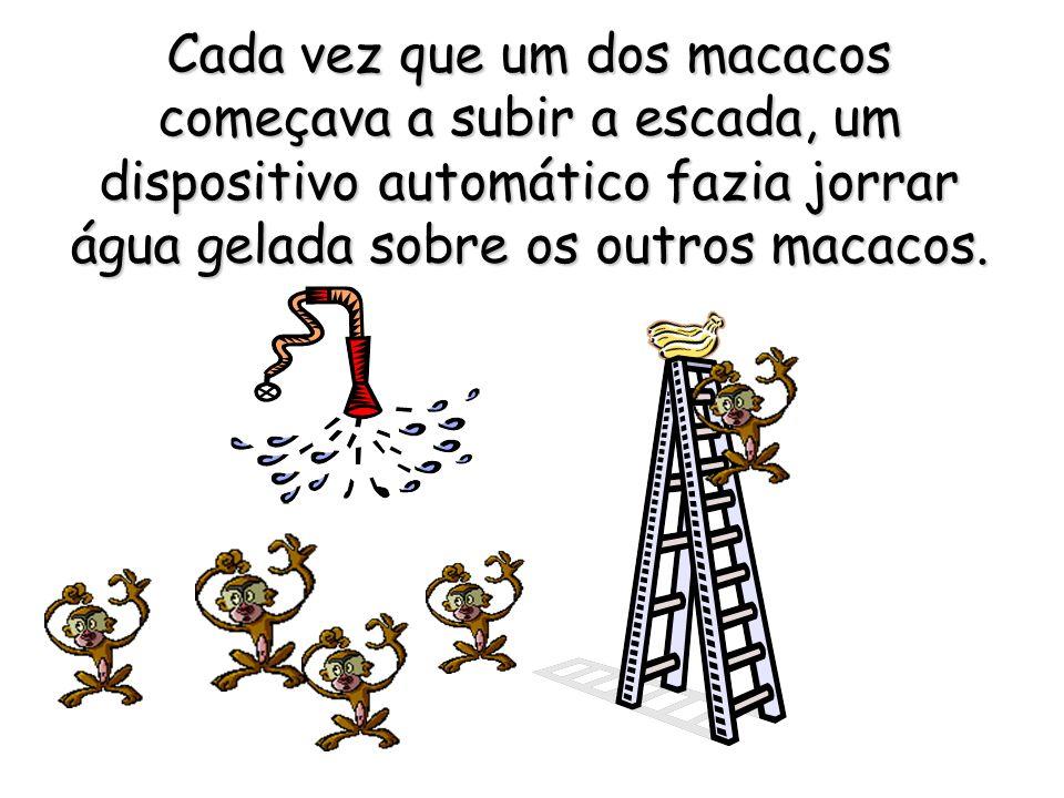 Cada vez que um dos macacos começava a subir a escada, um dispositivo automático fazia jorrar água gelada sobre os outros macacos.