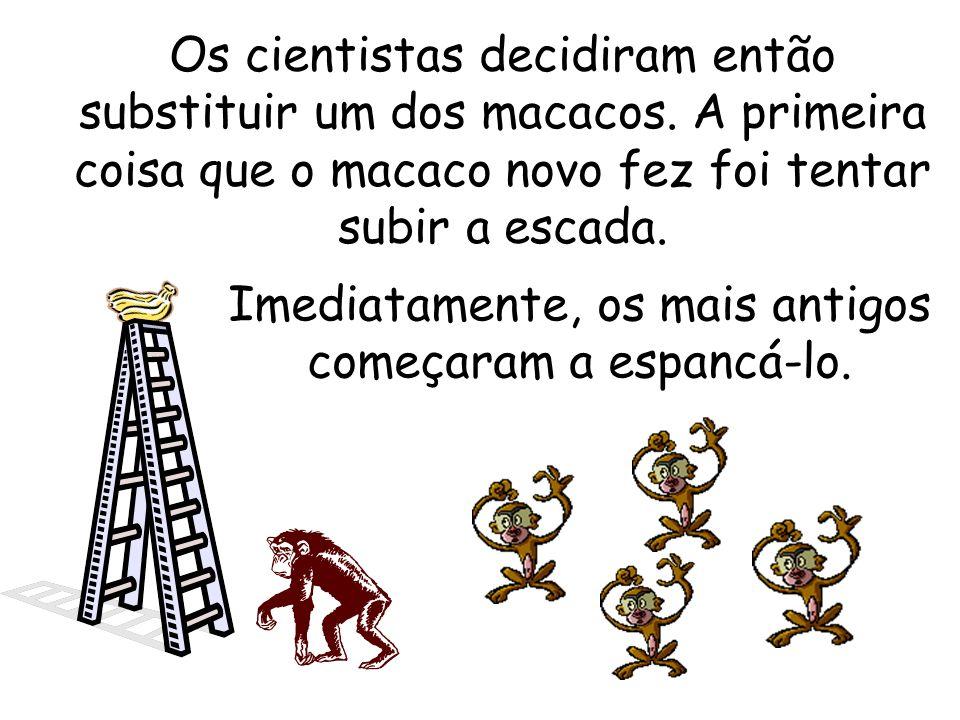 Obviamente, após um certo tempo, nenhum dos macacos se arriscava a subir a escada, apesar da tentação.
