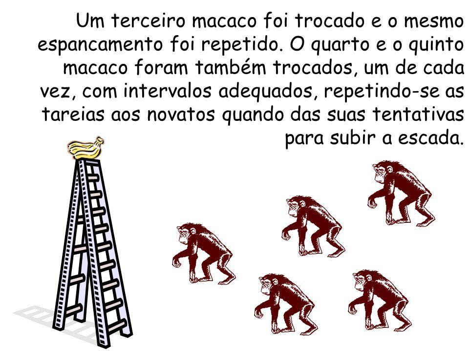 Um terceiro macaco foi trocado e o mesmo espancamento foi repetido.