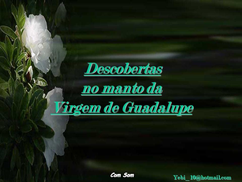 Descobertas no manto da Virgem de Guadalupe Com Som Yebi_10@hotmail.com