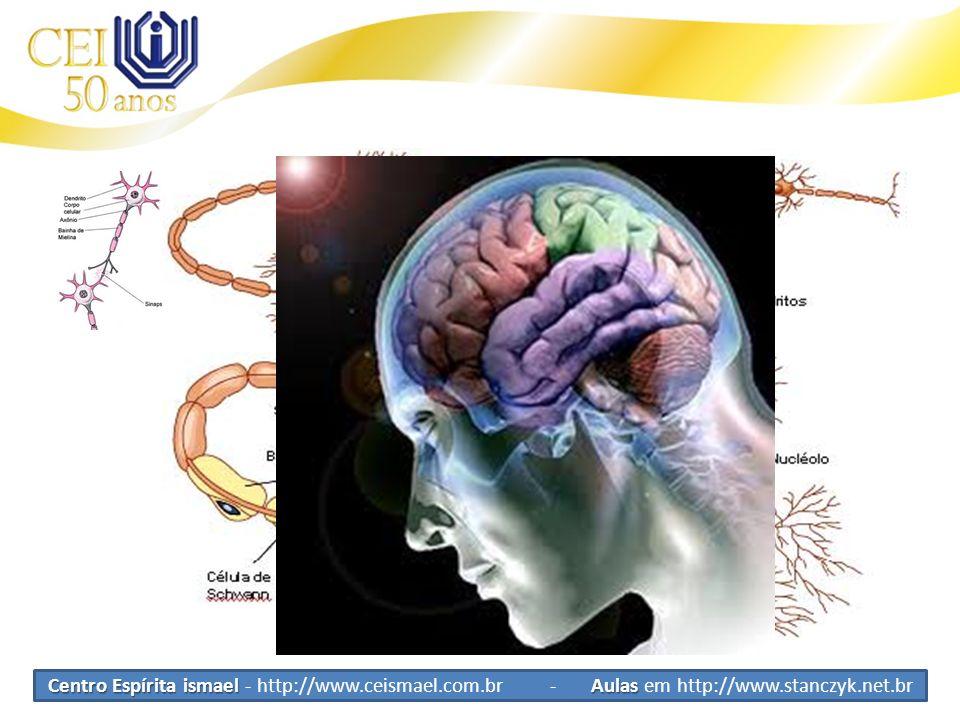 Tipos de Células Celulas Tronco Neurônios Conduz impulsos nervosos Recebe e Transporta as sensações Distribui comandos do cérebro aos músculos e outro