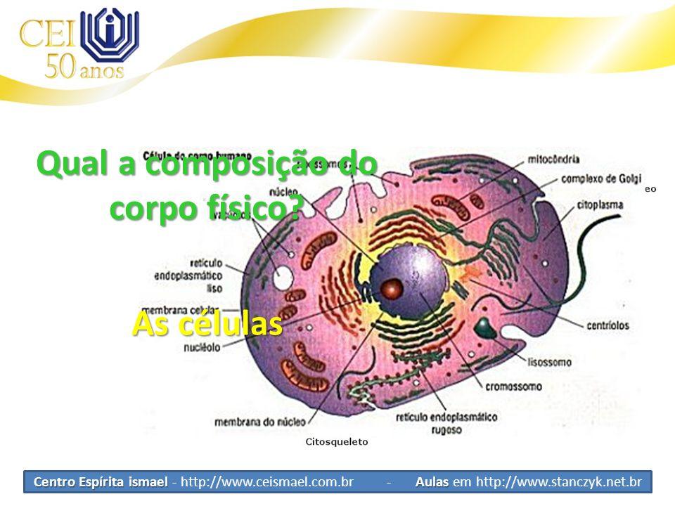 Centro Espírita ismael Aulas Centro Espírita ismael - http://www.ceismael.com.br - Aulas em http://www.stanczyk.net.br As células Qual a composição do