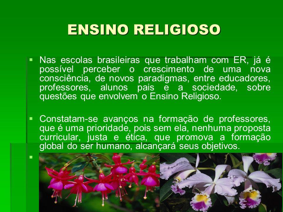 Nas escolas brasileiras que trabalham com ER, já é possível perceber o crescimento de uma nova consciência, de novos paradigmas, entre educadores, pro
