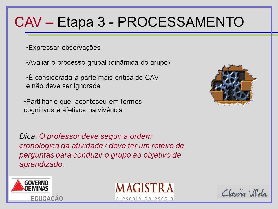 CAV – Etapa 3 - PROCESSAMENTO Expressar observações É considerada a parte mais crítica do CAV e não deve ser ignorada Avaliar o processo grupal (dinâm