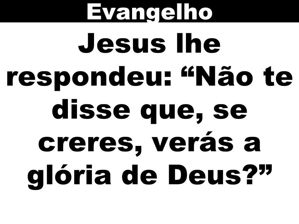 Jesus lhe respondeu: Não te disse que, se creres, verás a glória de Deus? Evangelho