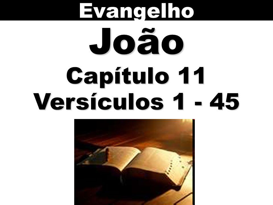 EvangelhoJoão Capítulo 11 Versículos 1 - 45