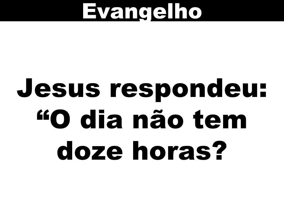 Jesus respondeu: O dia não tem doze horas? Evangelho