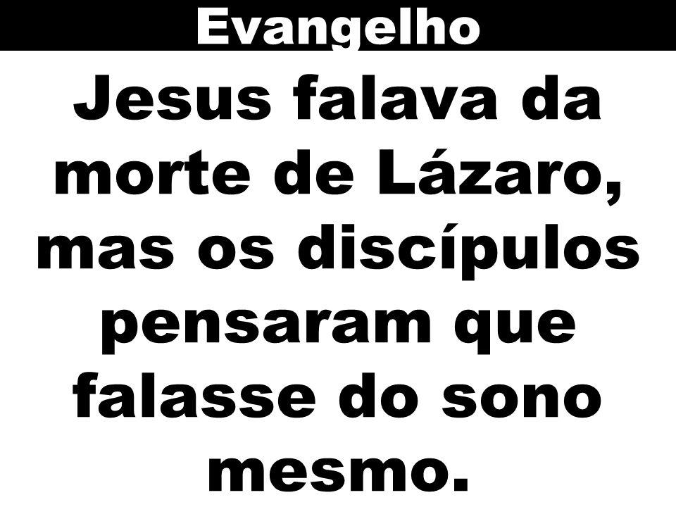 Jesus falava da morte de Lázaro, mas os discípulos pensaram que falasse do sono mesmo. Evangelho
