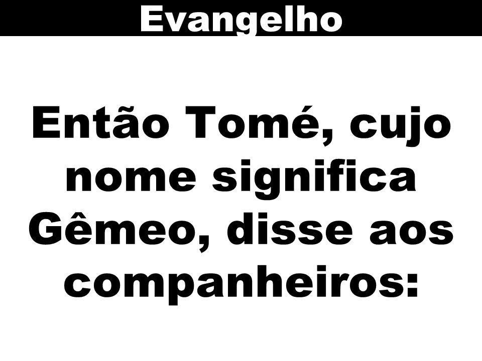 Então Tomé, cujo nome significa Gêmeo, disse aos companheiros: Evangelho