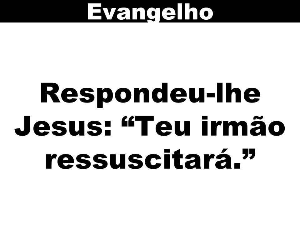 Respondeu-lhe Jesus: Teu irmão ressuscitará. Evangelho