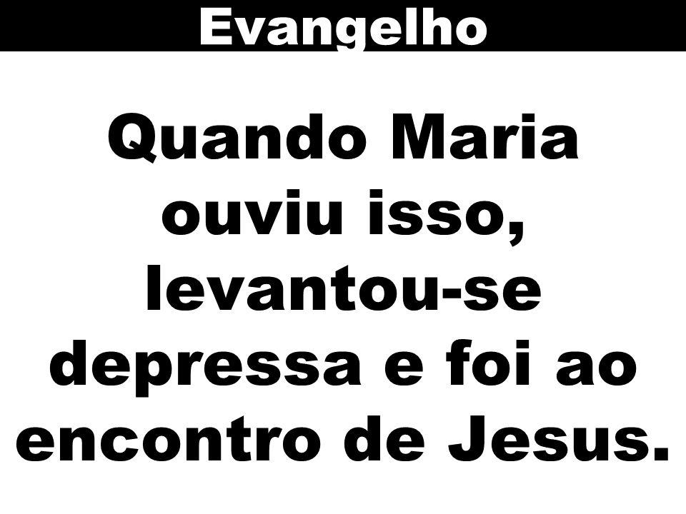 Quando Maria ouviu isso, levantou-se depressa e foi ao encontro de Jesus. Evangelho