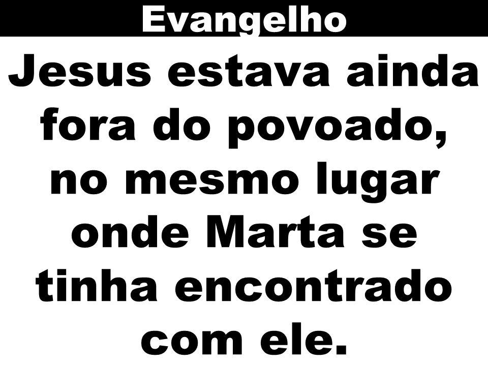 Jesus estava ainda fora do povoado, no mesmo lugar onde Marta se tinha encontrado com ele. Evangelho