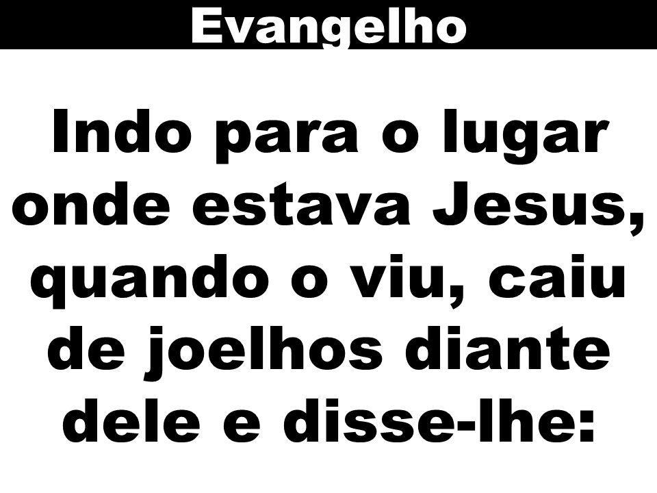 Indo para o lugar onde estava Jesus, quando o viu, caiu de joelhos diante dele e disse-lhe: Evangelho