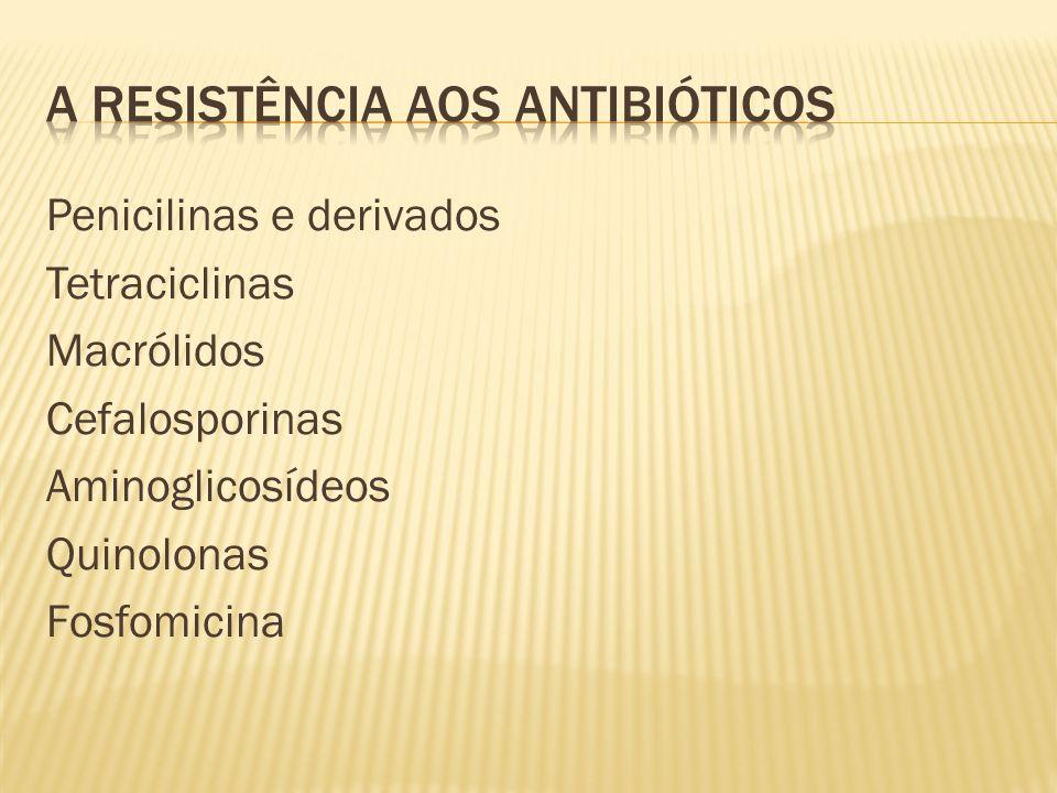 Penicilinas e derivados Tetraciclinas Macrólidos Cefalosporinas Aminoglicosídeos Quinolonas Fosfomicina