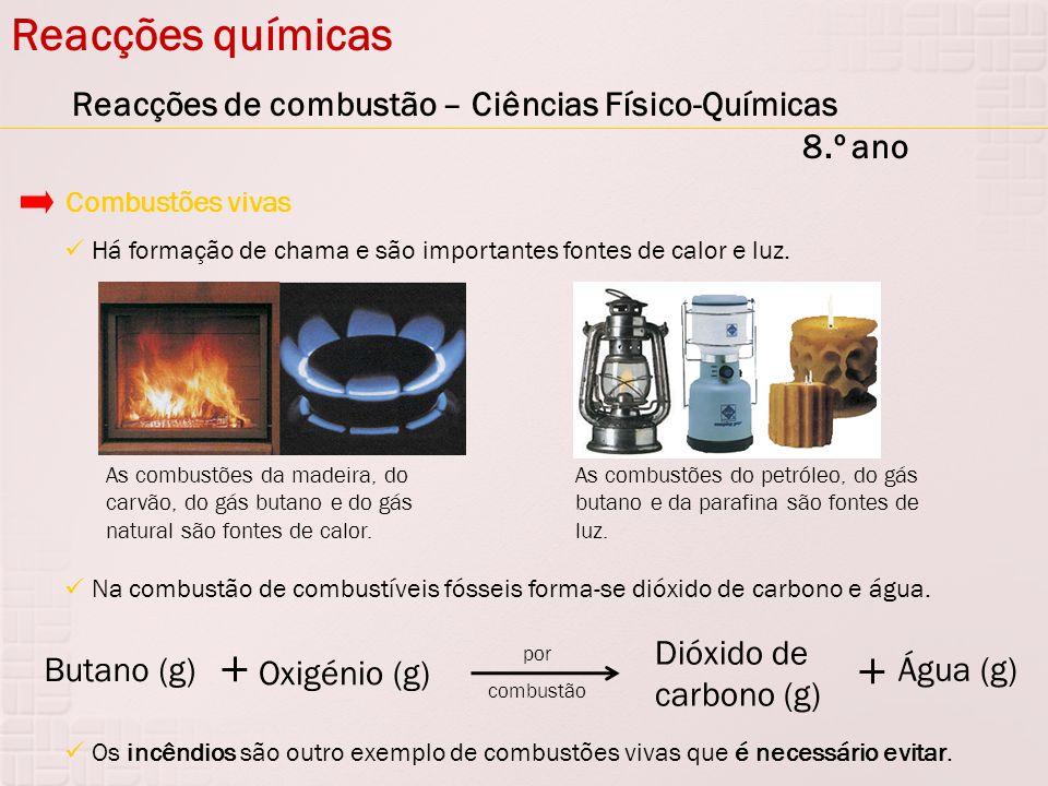 Reacções químicas Reacções de combustão – Ciências Físico-Químicas 8.º ano Há formação de chama e são importantes fontes de calor e luz. Combustões vi