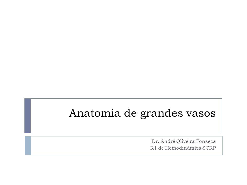 Anatomia de grandes vasos Dr. André Oliveira Fonseca R1 de Hemodinâmica SCRP