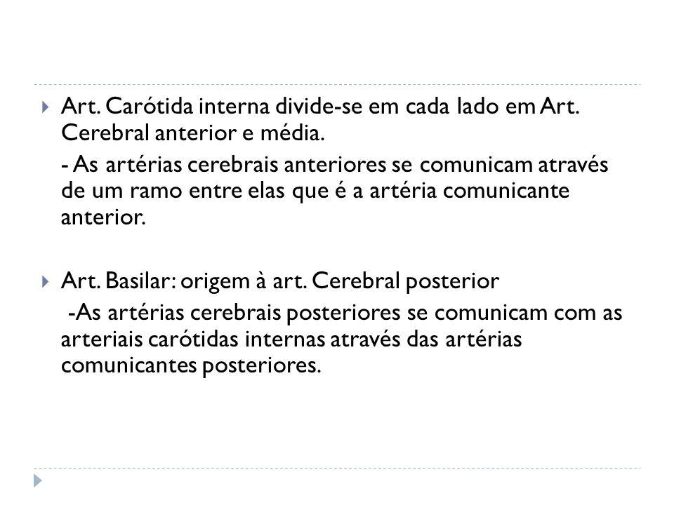 Art. Carótida interna divide-se em cada lado em Art. Cerebral anterior e média. - As artérias cerebrais anteriores se comunicam através de um ramo ent