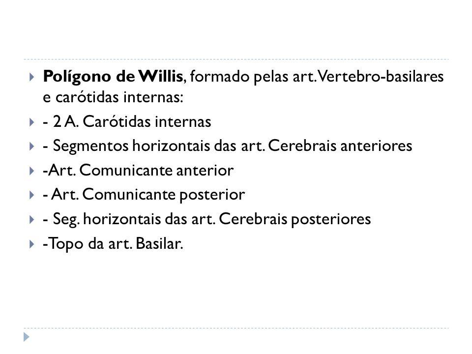 Polígono de Willis, formado pelas art. Vertebro-basilares e carótidas internas: - 2 A. Carótidas internas - Segmentos horizontais das art. Cerebrais a
