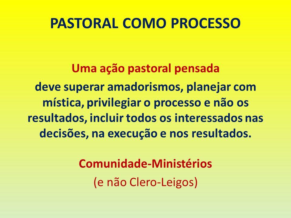 PASTORAL COMO PROCESSO Uma ação pastoral pensada deve superar amadorismos, planejar com mística, privilegiar o processo e não os resultados, incluir t