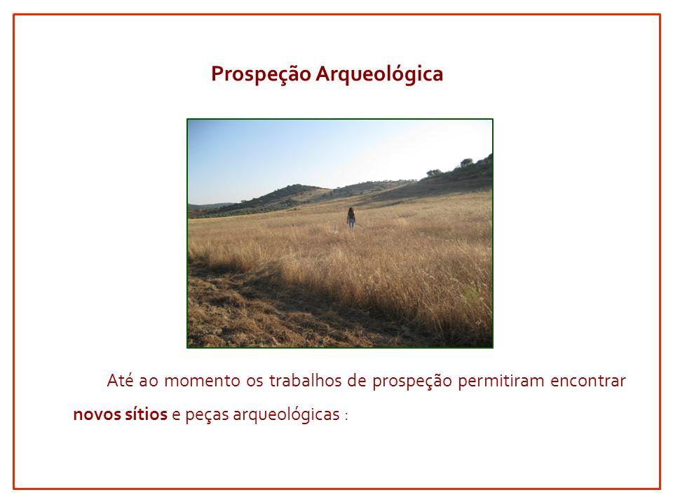 Até ao momento os trabalhos de prospeção permitiram encontrar novos sítios e peças arqueológicas : Prospeção Arqueológica