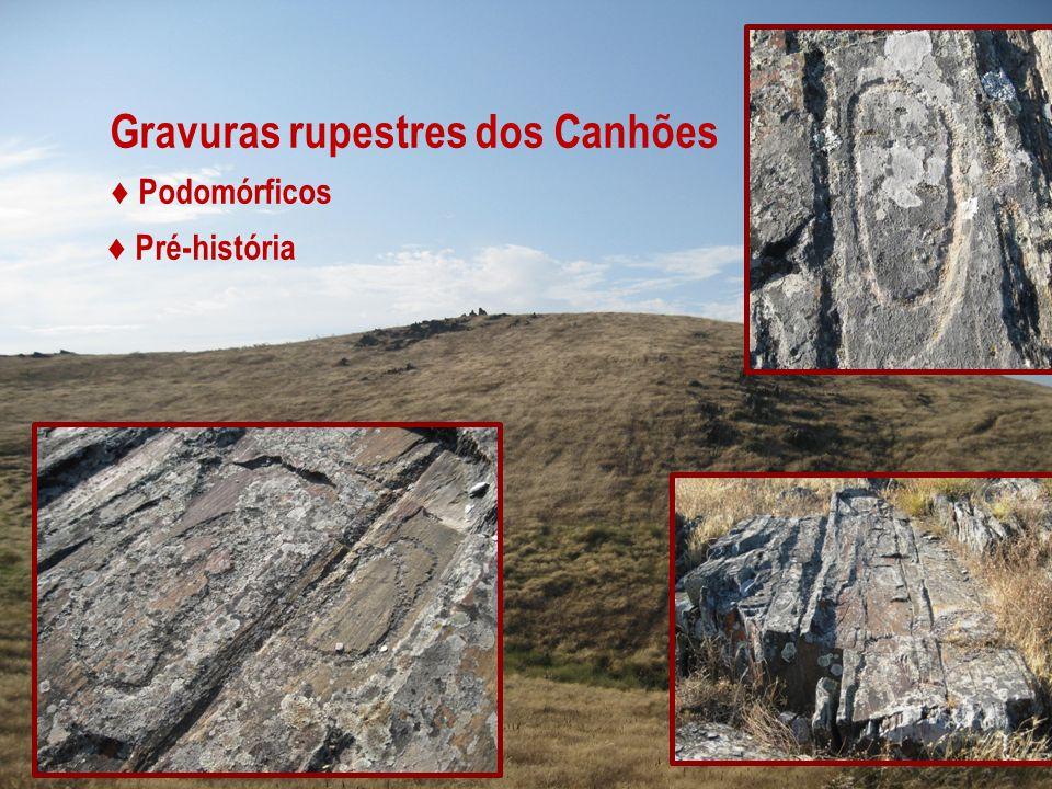 Gravuras rupestres dos Canhões Podomórficos Pré-história