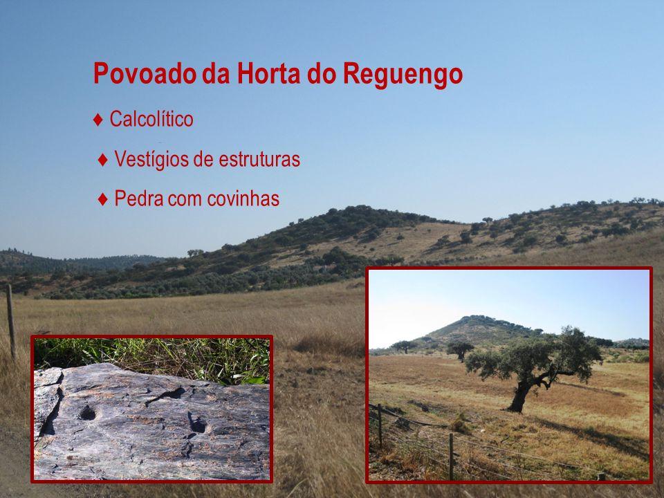 Povoado da Horta do Reguengo Calcolítico Vestígios de estruturas Pedra com covinhas