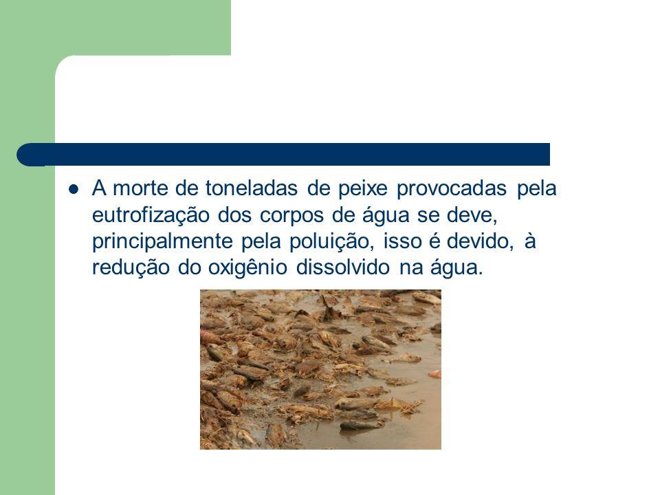 A morte de toneladas de peixe provocadas pela eutrofização dos corpos de água se deve, principalmente pela poluição, isso é devido, à redução do oxigê