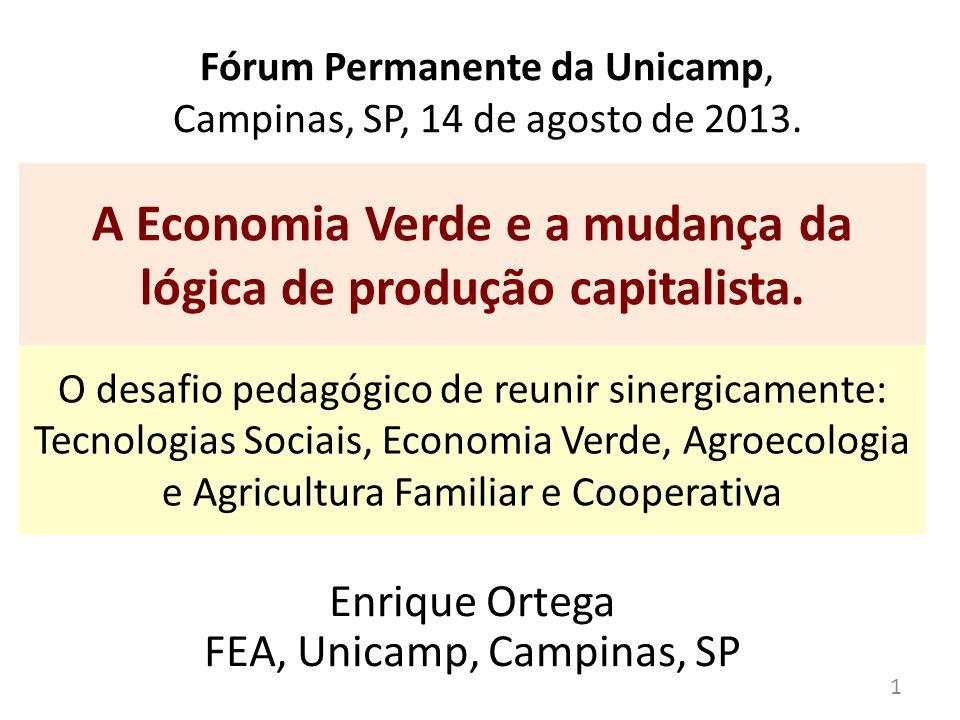 Fórum Permanente da Unicamp, Campinas, SP, 14 de agosto de 2013. A Economia Verde e a mudança da lógica de produção capitalista. Enrique Ortega FEA, U