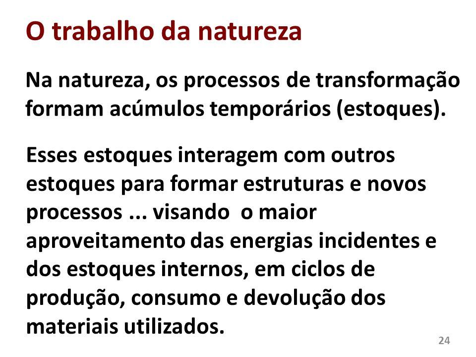 O trabalho da natureza Na natureza, os processos de transformação formam acúmulos temporários (estoques). 24 Esses estoques interagem com outros estoq