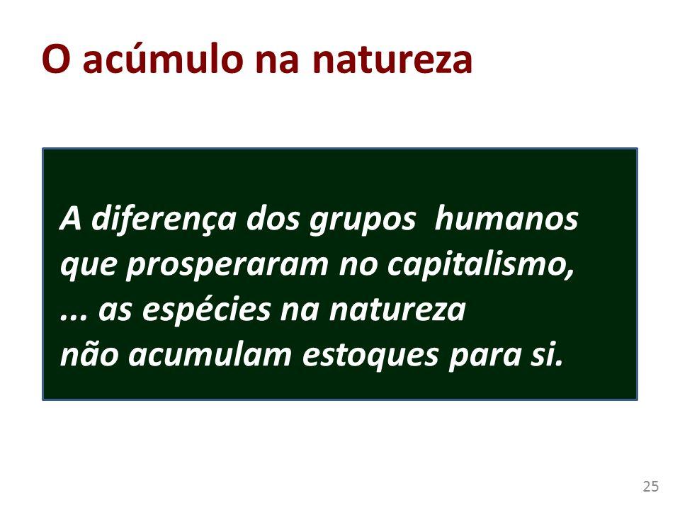 O acúmulo na natureza A diferença dos grupos humanos que prosperaram no capitalismo,... as espécies na natureza não acumulam estoques para si. 25