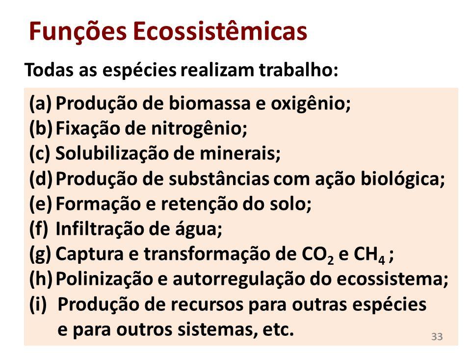 Funções Ecossistêmicas Todas as espécies realizam trabalho: (a)Produção de biomassa e oxigênio; (b)Fixação de nitrogênio; (c)Solubilização de minerais
