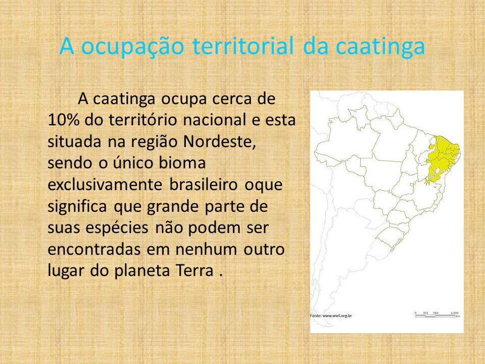 A ocupação territorial da caatinga A caatinga ocupa cerca de 10% do território nacional e esta situada na região Nordeste, sendo o único bioma exclusivamente brasileiro oque significa que grande parte de suas espécies não podem ser encontradas em nenhum outro lugar do planeta Terra.
