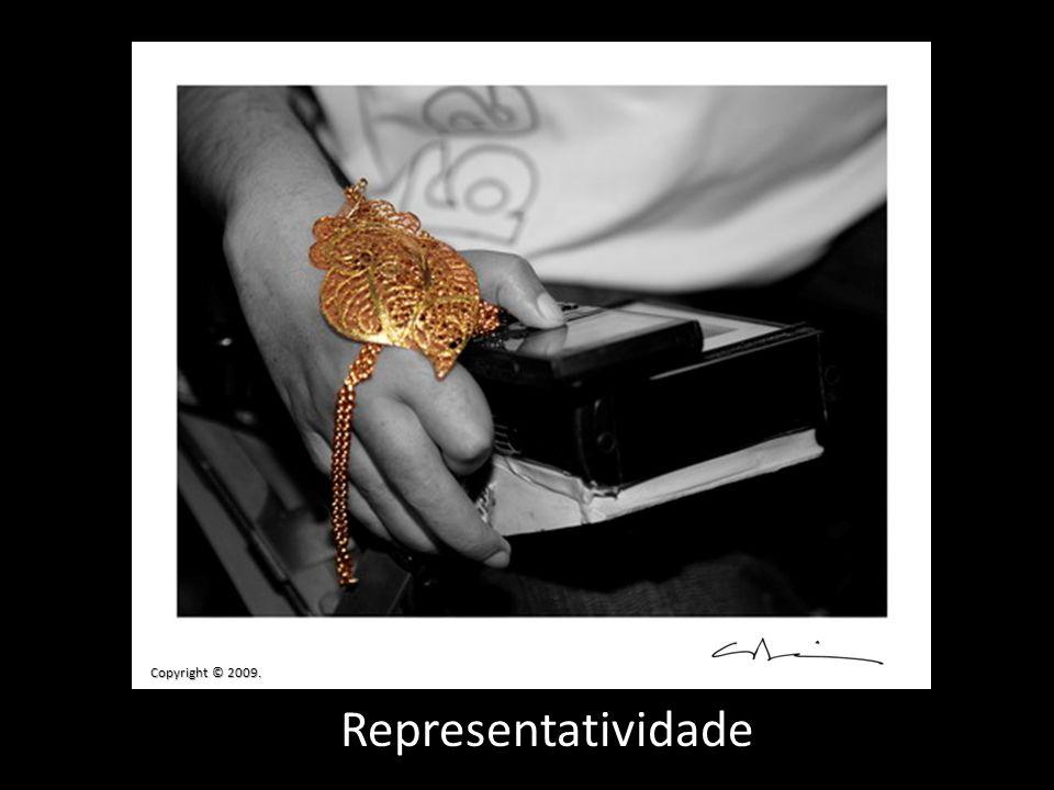 Representatividade Copyright © 2009.