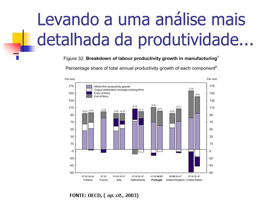 Levando a uma análise mais detalhada da produtividade... FONTE: OECD, ( op. cit., 2003)