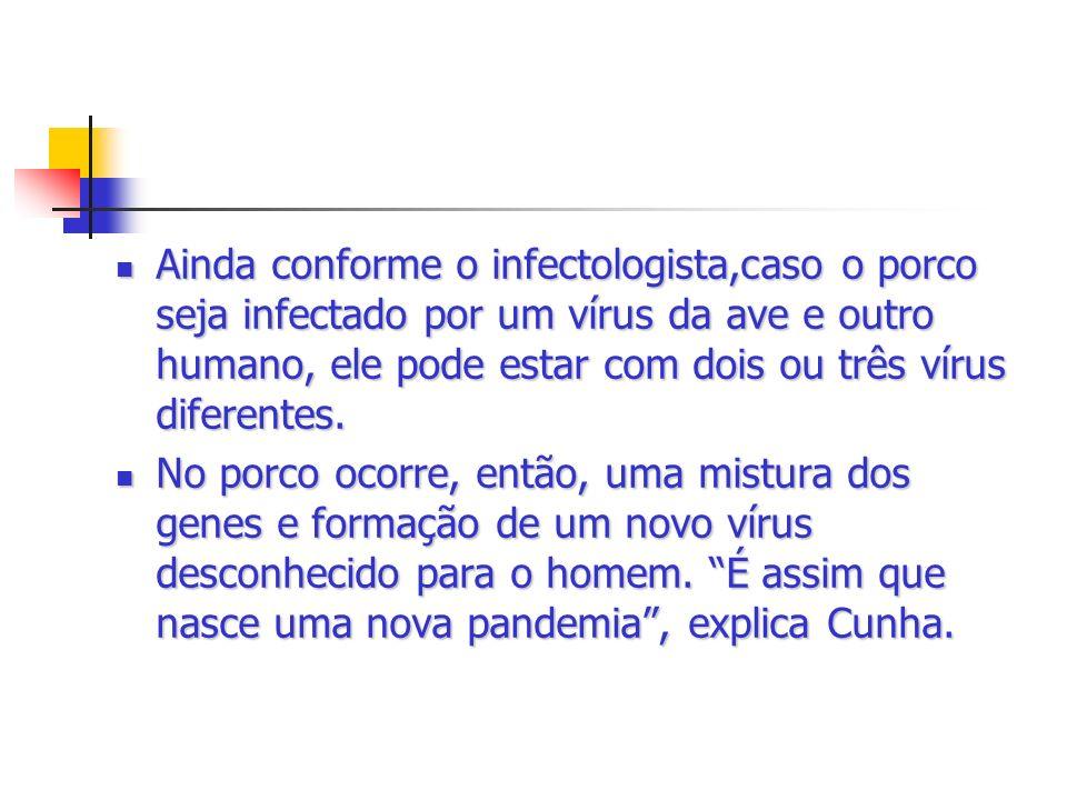Ainda conforme o infectologista,caso o porco seja infectado por um vírus da ave e outro humano, ele pode estar com dois ou três vírus diferentes. Aind