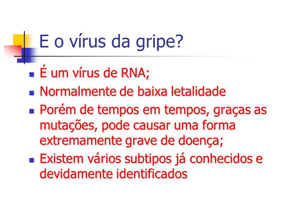 E o vírus da gripe? É um vírus de RNA; É um vírus de RNA; Normalmente de baixa letalidade Normalmente de baixa letalidade Porém de tempos em tempos, g